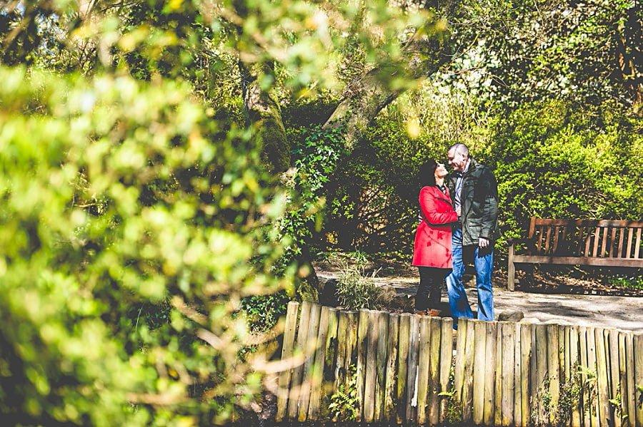Carolina & David's Pre Wedding Photography @ Clyne Gardens, Swansea 4