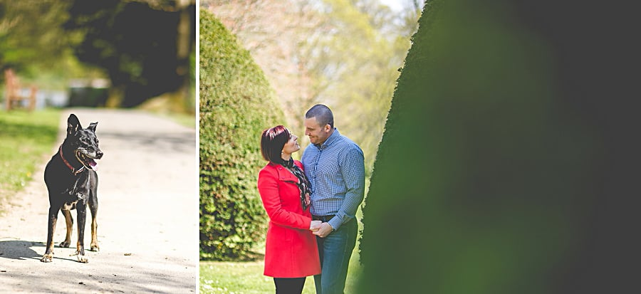 Carolina & David's Pre Wedding Photography @ Clyne Gardens, Swansea 22