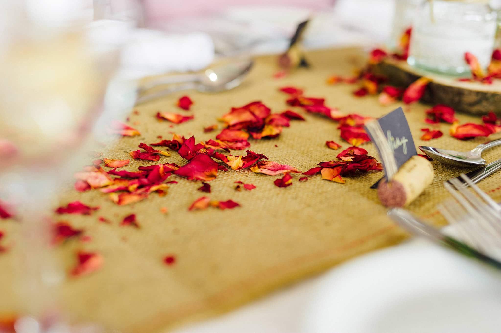 wedding-photographer-aberystwyth-wales (130)